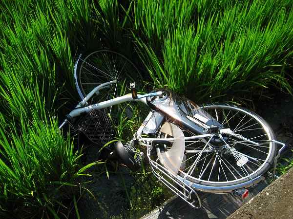 1.自転車放棄.jpg