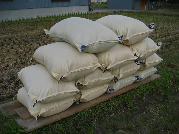 11.籾の袋.jpg