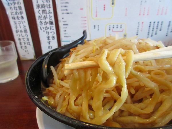 12.多加水の縮れ平太麺.jpg