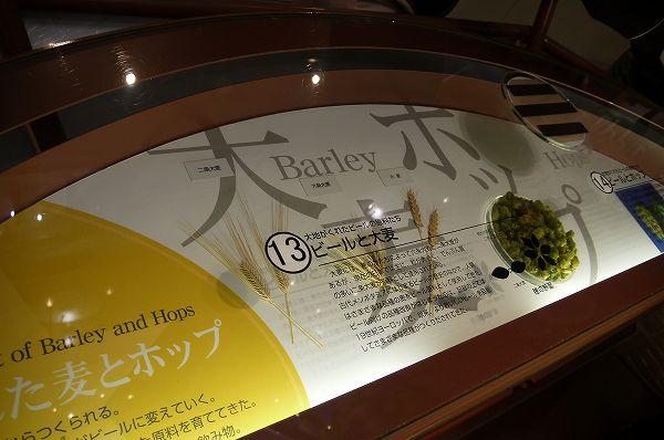 15.ビールの材料(1).jpg