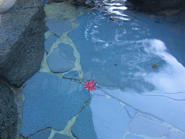 19.紅葉の赤が湯にひとつ.jpg