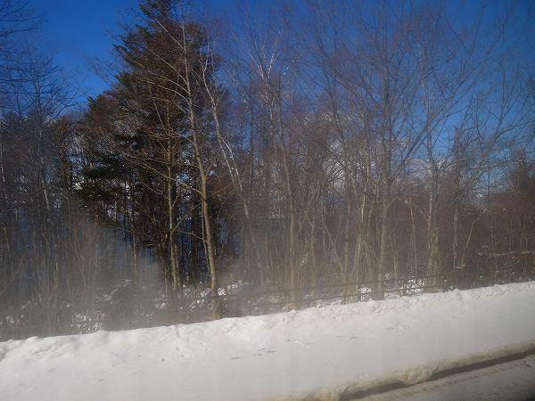 19.車窓から.jpg