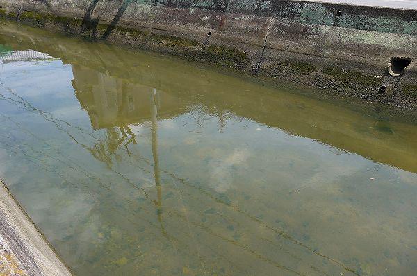 20.1225頃の水路.jpg