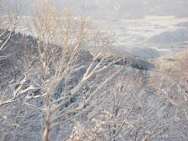 5.樹氷もきれい.jpg