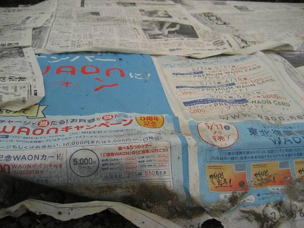 5.被せた新聞紙.jpg