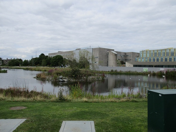 5.UCD(2).jpg