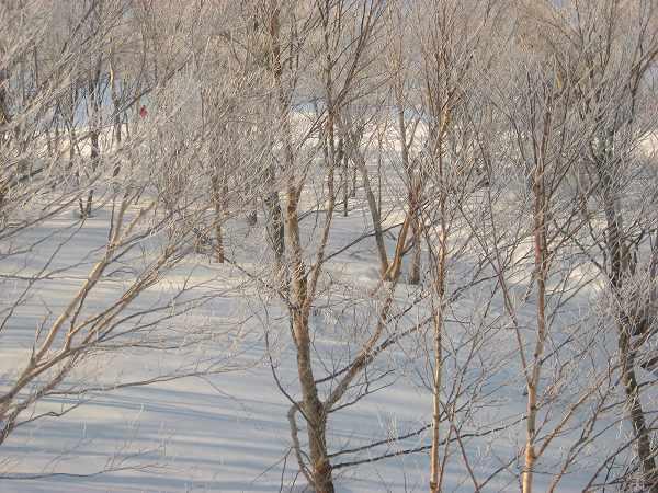 7.樹氷-2.jpg