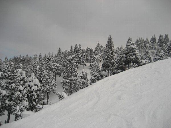 7.雪深く.jpg