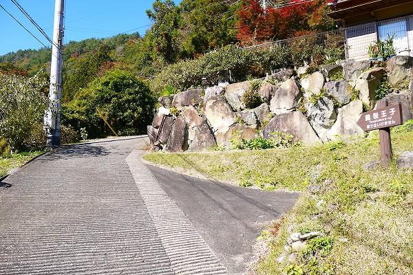 8.こういった道を歩く.jpg