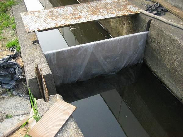 9.水を入れる.jpg