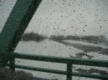 1.雨の九頭竜川.jpg