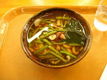 9.山菜うどん.jpg