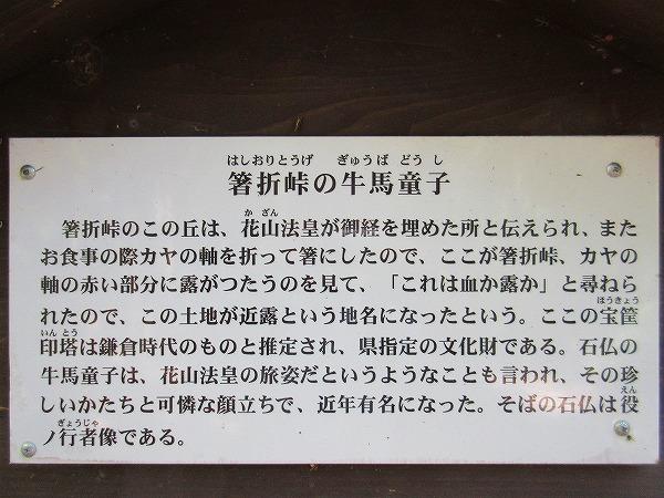 10.解説文.jpg