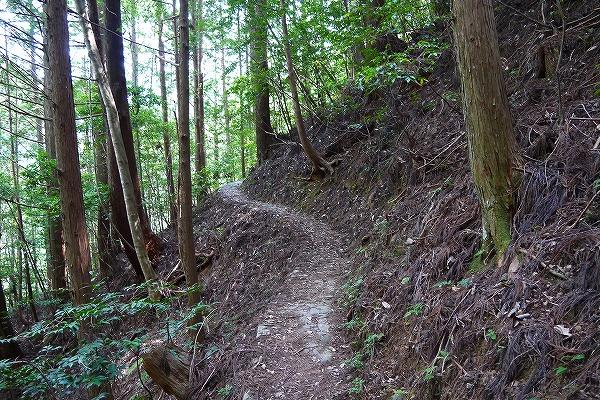 11.石畳が山道にかわり.jpg