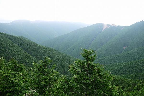 2.深山幽谷.jpg