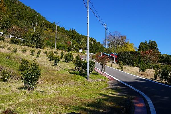 23.振り返ると秋晴れの空.jpg