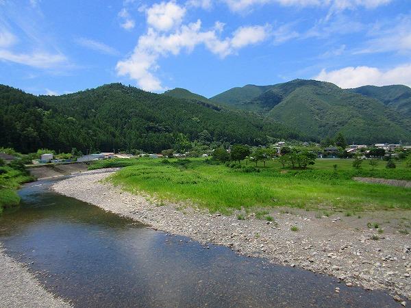 23.熊野古道はこの山の中を通っています.jpg