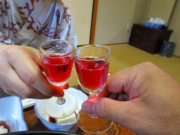 8.梅酒で乾杯.jpg