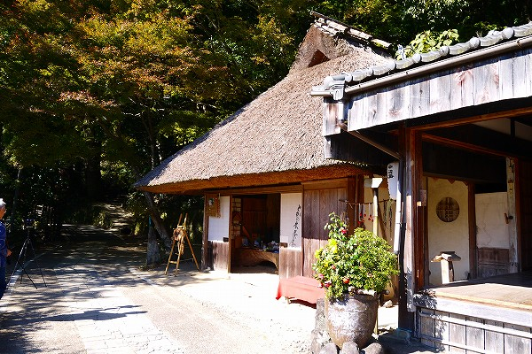 9.とがの木茶屋(休業中).jpg